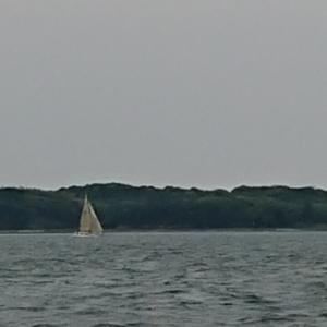 久々に海へ