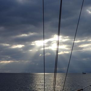 博多漁港へ