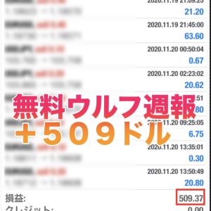 【無料版ウルフ&ウルフ2 2020年11 月 第3週目の成績】