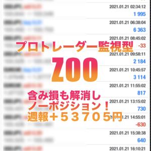 【EA+プロトレーダー監視型 ZOO 2021年1月 第2週目の成績】