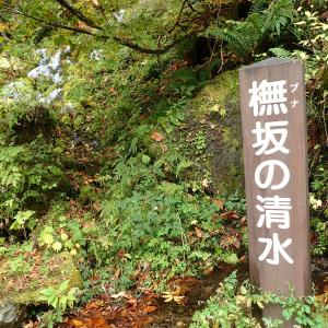 福島県 南会津郡 桧枝岐村 橅板の清水