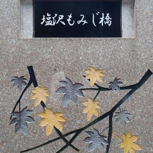 埼玉県 秩父市 塩沢もみじ橋の滝