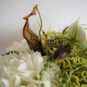 花の癒し効果は医学的に証明されている!?花の効果をうまく使いこなそう
