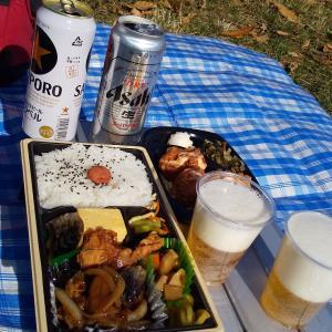 水元公園!HottoMottoの幕の内弁当で公園飲み!