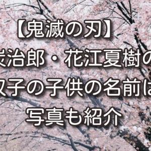 【鬼滅の刃】炭治郎役・花江夏樹の双子の子供の名前は?写真も紹介