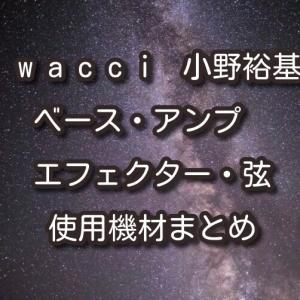 wacci(ワッチ)小野裕基のベース・アンプ・エフェクター・弦・使用機材まとめ