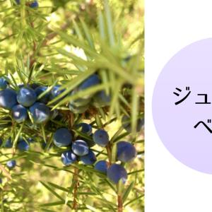 【アロマ・精油事典】ジュニパーベリー