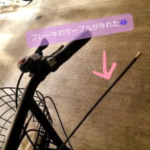 【続】マンション10年目の試練・・・パート2