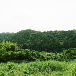 明治時代の神社再編 青垣神社の場合
