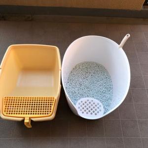 【猫猫】 猫トイレ交換