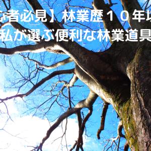 【初心者必見】林業歴10年以上の私が選ぶ便利な林業道具