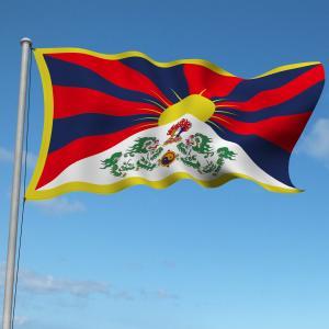 チベットはいかにして中国に実効支配されたか! part1