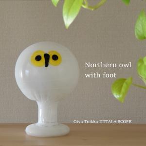 scope別注フクロウ◇Northern owl with foot ナチュラルなインテリアのアクセントに♪