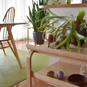 インテリアと植物を楽しむ暮らし◇artek サイドテーブルとベンチの配置換えで部屋の印象を変える模様替え