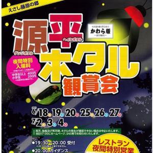 2021歴史公園えさし藤原の里で「源平ホタル観賞会」が開催中です!