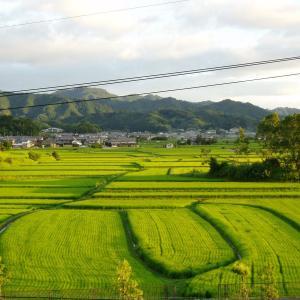 奈良とは何ですか? 日本とはどこですか?