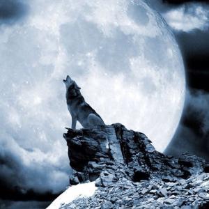Hunter's Moon(狩猟月)