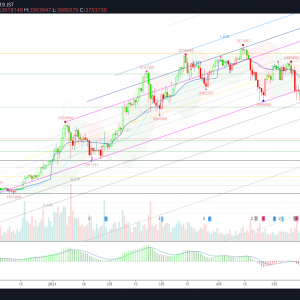 BTC/JPY(ビットコイン) 0620 Weekly-Review