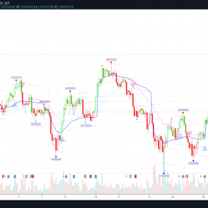 BTC/JPY(ビットコイン) 0704 Weekly-Review