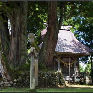 松尾神社と二本杉(荻ノ島)