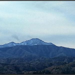 今日の米山