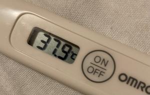 2回目のワクチン接種2日目の様子 後半戦+3日目の様子48時間超える