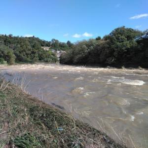 台風19号でまた河原の景観が変わりました。