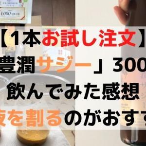 【感想】豊潤サジー(1本300㎖)をお試し注文&おすすめは牛乳割り(ブログ)