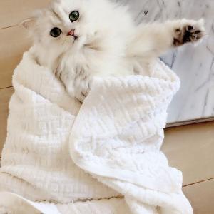 お風呂だじょ~♫