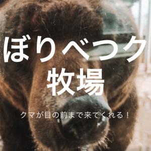 クマが目の前まで来る!子どもがよろこぶ【のぼりべつクマ牧場】