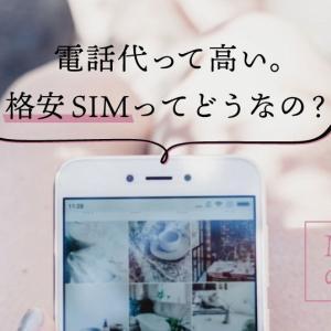 「格安SIMにして年間6万円以上の節約」悩んでいる時間がもったいない