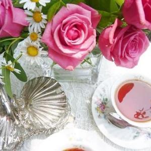 薔薇の花とディンブラ