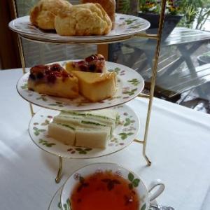 ディンブラ(セイロン紅茶)の魅力