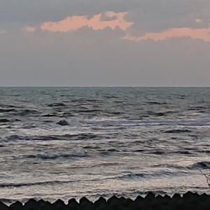 【ドライブインあさり浜】おすすめ海老天丼