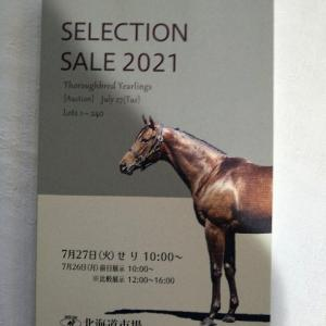 セレクションセールの平均価格がすごすぎる