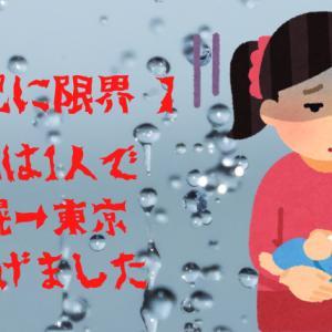 【育児に限界】ハハは1人で札幌→東京に逃げた話