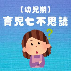 【幼児期】育児七不思議