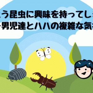 とうとう昆虫に興味持ってしまった年子男児達とハハの複雑な気持ち。