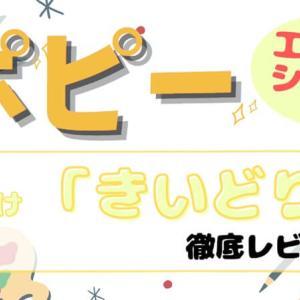 【幼児ポピー】年少向け(3歳)きいどりの口コミ感想&写真33枚で教材レビュー!