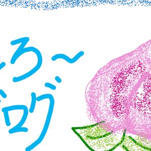 ヲィラのブログはなぜ人気が無いのか❓