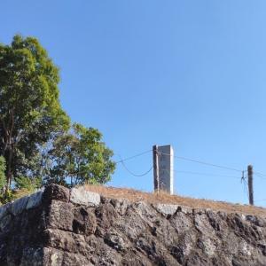 椿井大塚山古墳に行きました ⛩。