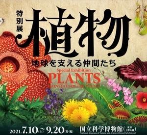 植物 地球を支える仲間たち