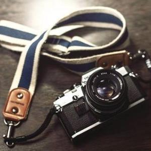 【ストックフォト副業】写真ACに初心者がクリエイター登録して3か月の収入実績は?