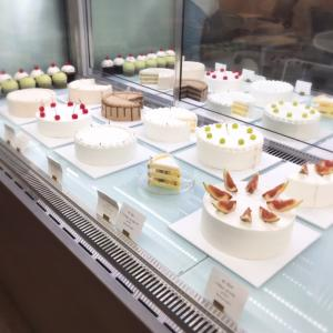Make a cake in 판교