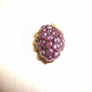ブラックベリーの実を収穫しました②(ソーンフリー)