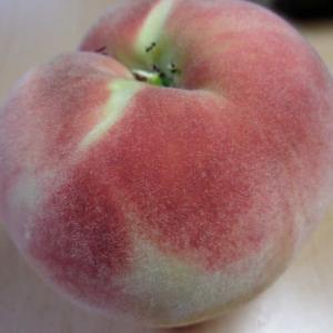 桃を収穫しました③(白鳳)
