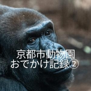 京都市動物園おでかけ記録②見どころやマップにない昼食時の休憩場所