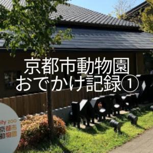 京都市動物園おでかけ記録①子連れに嬉しい安くて近い駐車場や園の印象