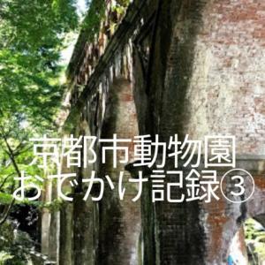 京都市動物園おでかけ記録③周辺の南禅寺レポとカフェでプリンのかき氷