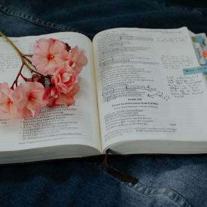 看護師国家試験の勉強方法と使用した書籍